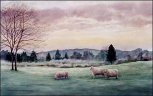 Sheep at Dawn: original watercolor painting of Romney flock by Geraldine McKeown